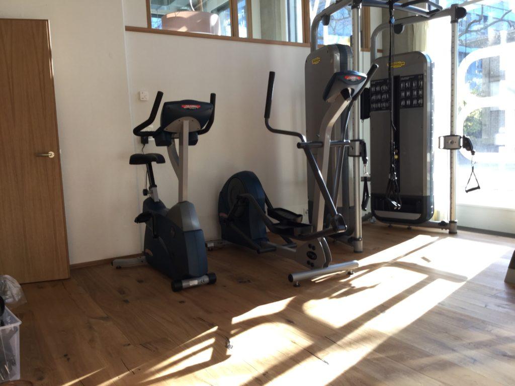 Trainingsraum BodyLab | Osteopathie Physiotherapie Rehabilitation Training Massage Fasziendostorsionsmodell FDM | Zürich