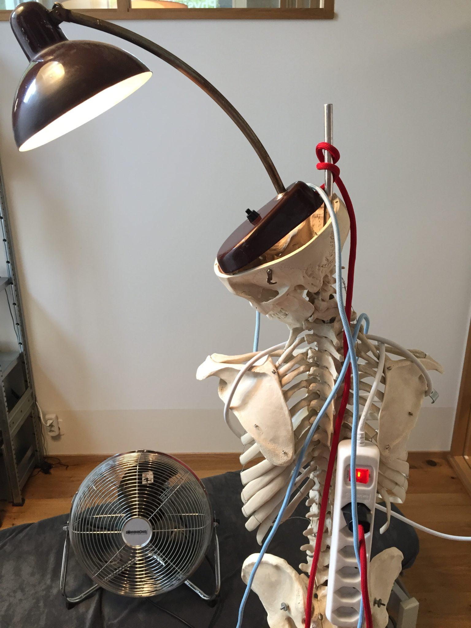 BodyLab Osteopathie Physiotherapie Rehabilitation Training Zürich Altstetten
