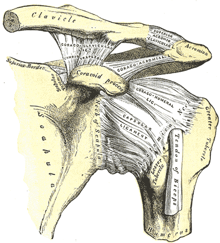 Schulter Impingement - Subacromiales Impingement Syndrom
